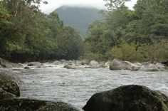 Mossman Gorge, near Port Douglas. Copyright Nicolae Fieraru, www.centaminute.com