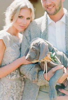 Brides.com: The bride and groom dressed up their sweet Weimaraner puppy with a few peach-colored flowers on her collar.