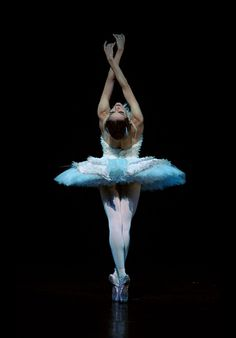 The Dying Swan, Ballets Russes  Elena Glurdjidze ballerina wears her Chanel tutu.    Photo by Annabel Moeller.