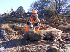 Greg Merriam Master Hunt Broker Master Land Owner Voucher Broker Email: DeerElkBear@Gmail.com Web Page:  http://www.discountedhunts.net