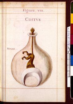 Figura VIII - Coitus. Virtutes - Sapientia veterum philosophorum, sive doctrina eorumdem de summa et universali medicina 40 hierogliphis explicata
