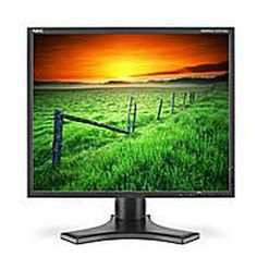 Looking for a 19-inch PC Display? Check Out These Options: Best Graphics - NEC Multisync LCD1990SX-BK 19-inch