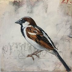 Nature Paintings, Bird, Animals, Animales, Paintings Of Nature, Animaux, Birds, Animal, Animais