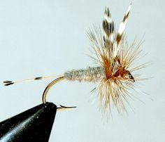 The Adams: History Revisited by Tom Deschaine | Hatches Fly Tying Magazine