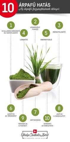 A zöldárpa egy igazi BIO MULTIVITAMIN, rengeteg módon támogatja teljes szervezetünk egészségét. A zöldárpa nagyon magas koncentrációban tartalmaz vitaminokat, ásványi anyagokat, fehérjéket és enzimeket, amik kitűnően hasznosulnak testünkben. Különösen jó a rendszertelenül étkezőknek, a kevés gyümölcsöt és zöldséget fogyasztóknak, akiknek emésztési és felszívódási problémáik vannak. Biztosítsd a testednek te is az árpafű összetevőit, és használd ki a pozitív hatásait!  Az egészség legyen…
