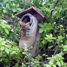 I was looking for some ideas for bird houses and I came across this!  I love it!