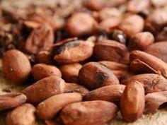 Granos de cacao- cacao beans - fèves de cacao Meat Shop, Savarin, Powder Recipe, Cacao Powder, Seeds, Vegetables, Bio, Conservation, Healthy