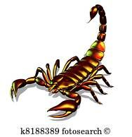 Stock Illustration of Metallic Scorpion - Search Vector Clipart, Drawings, Print Murals, Illustrations, and EPS Graphics Images - Types Of Bugs, Types Of Insects, Butterfly Drawing, Clip Art, Garden Guide, Medical Illustration, Vector Clipart, Illustrations, Royalty Free Photos
