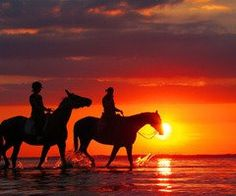 Riding horses on the beach at sunset.... perfect <3