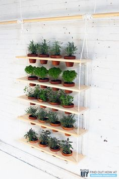 A DIY Hanging Herb Garden That Brings The Outdoors In #HerbGarden