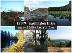 15 NW Washington Hikes that are 3 Miles Long or Less – Northwest Healthy Mama