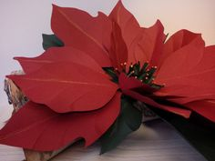 Poinsettia paper large Christmas decor item Hand by 2CLVR4UDESIGNS, $20.00