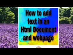 Learn how to add tags and and text in an HTML document in your webpage. Learn Html, Texts, Ads, Make It Yourself, Education, Learning, Youtube, Studying, Teaching