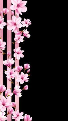 Iphone Wallpaper Vsco, Flower Phone Wallpaper, Cute Wallpaper Backgrounds, Pretty Wallpapers, Flower Backgrounds, Love Wallpaper, Aesthetic Iphone Wallpaper, Cellphone Wallpaper, Black Wallpaper