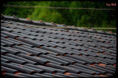 A chuva lava os telhados, a alma, a raiva, e a dor, Só não leva embora o sentimento de fazer parte da natureza e estar vivo. - HCB