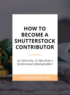 Become A Shutterstock Contributor | Monetize Your Blog | Get Paid For Your Photos