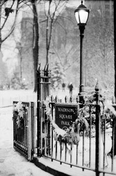 entrance - Madison Square Park, N.Y.