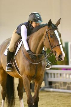 The bond you share with your horse is unlike any other; you are all they have, and sometimes, they're all you need.