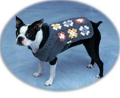 granny square dog coat.....my dog granny pearl would look sooooo cute!
