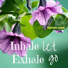 Learning how to deal with stress will help your recovery. Breathwork is a great way to do this.