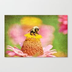 Garden Life Stretched Canvas   - $85.00