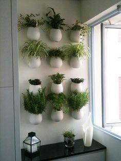 Растения в интерьере: рекомендации и 78 идей для вдохновения - The Pled