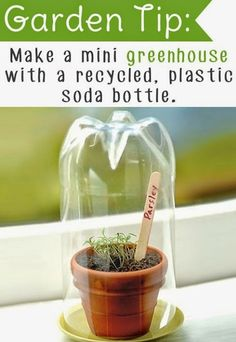 #Gardening Tips : Make a Mini Greenhouse With a Recycled Plastic Soda Bottle | My Favorite Things