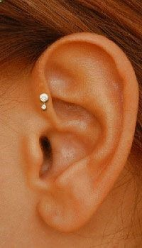A tragus piercing is a very subtle form of body modification. Interested in the tragus piercing cost or process? Check out all the details here! Helix Piercings, Piercing Helix Avant, Piercings Corps, Piercing Implant, Piercings Ideas, Cute Piercings, Body Piercings, Piercing Tattoo, Unique Piercings
