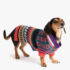 Ware of the Dog Jacquard Sweater