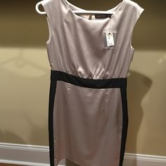BRAND NEW THE LIMITED DRESS WITH TAGS Never worn The Limited dress with tags attached and extra button. It is a beautiful champagne / silver dress with black. It was bought as a gift but was a size too big for me, but Feel free to make an offer using the offer button. All items come from a smoke free and pet free home☺️ The Limited Dresses Midi