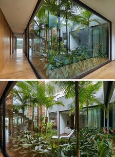 Floor to ceiling windows, skylights and retractable walls fill this modern home with natural light. indoor garden 8 Interesting Floor to Ceiling Windows Ideas for Modern Houses Interior Garden, Home Interior Design, Exterior Design, Interior And Exterior, Interior Ideas, Botanical Interior, New Modern House, Modern House Design, Green House Design