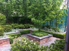 Andrew Renn Design, Beautiful gardens of Melbourne Australia traditional-garden