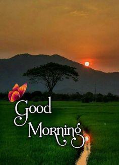 Good Morning Images Flowers, Good Morning Roses, Good Morning Photos, Good Morning Good Night, Morning Wish, Beautiful Morning, Love Shayri, English Writing Skills, Good Morning Greetings
