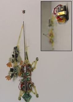 Stanford students created gecko inspired micro robots that can move heavy loads.