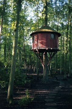 Anthony Gibbon's Roost Treehouses Channel Lothlórien From 'Lord Of The Rings' (PHOTOS)