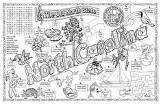 Florida coloring pages and symbols on pinterest for Florida state symbols coloring pages