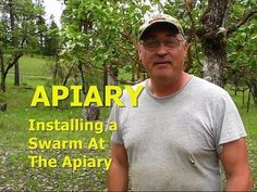 APIARY - Installing A Honey Bee Swarm