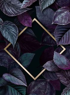 Rhombus frame on a leafy background vector premium image by Aom Woraluck eyeeyeview Framed Wallpaper, Flower Background Wallpaper, Flower Backgrounds, Screen Wallpaper, Phone Backgrounds, Wallpaper Quotes, Wallpaper Backgrounds, Tropical Background, Wallpaper Plants