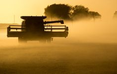 Dusk Harvest of soybeans