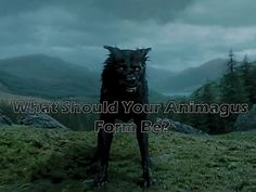 What form should your animagus take? Cat like McGonagall, Stag like James Potter, or maybe something entirely different!