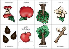 score for poem apple school - Healthy Food Art Apple School, Letter Of The Week, Apple Books, Apple Tree, In Kindergarten, Food Art, Preschool, Montessori, Teaching
