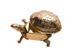 Reality Box Turtle Box by Areaware available at ARTEL Design Stores