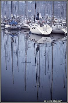 Bassin Vauban, saint malo