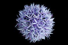 Paper Allium Tutorial – Design*Sponge