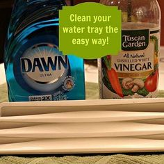 Cleaning Your Refrigerator Water Dispenser Tray