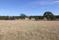 Finding acreage or farms for sale in LEGUME, NSW has never been easier