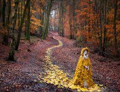 Dieses Foto weckt Erinnerungen an den britischen Künstler Andy Goldsworthy, der...