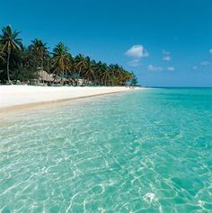 been there - the waters so clear!  Punta Cana, Dominican Republic