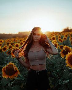 a sunflower field is like a sky with a thousand suns ?