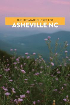 Heading to Asheville? Caroline and Erin have been exploring the city since 2006. Check out their ultimate bucket list of 101 things to do in Asheville NC! Ashville North Carolina, Visit North Carolina, Ashville Nc, North Carolina Mountains, Zermatt, North Carolina Vacation Spots, Stockholm, Dublin, Cool Places To Visit